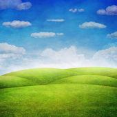 Panorama zelené pole s pozadím zamračená obloha