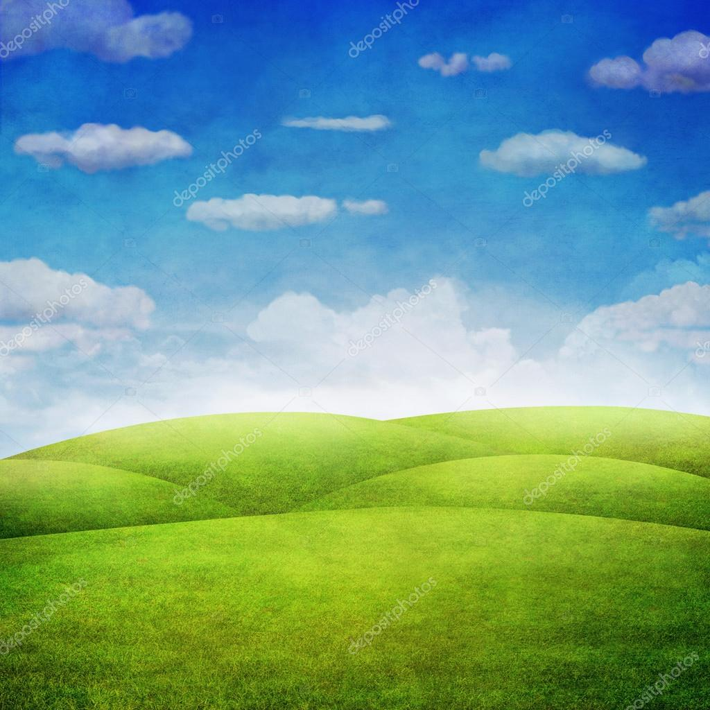 Panorama of green field with  cloudy sky background