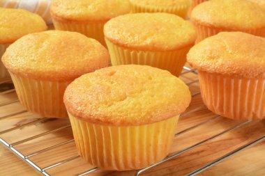 Fresh baked cupcakes