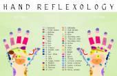 Fotografie Reflexology hand chart
