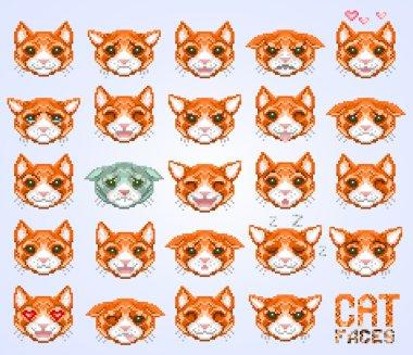 cat faces emoticon