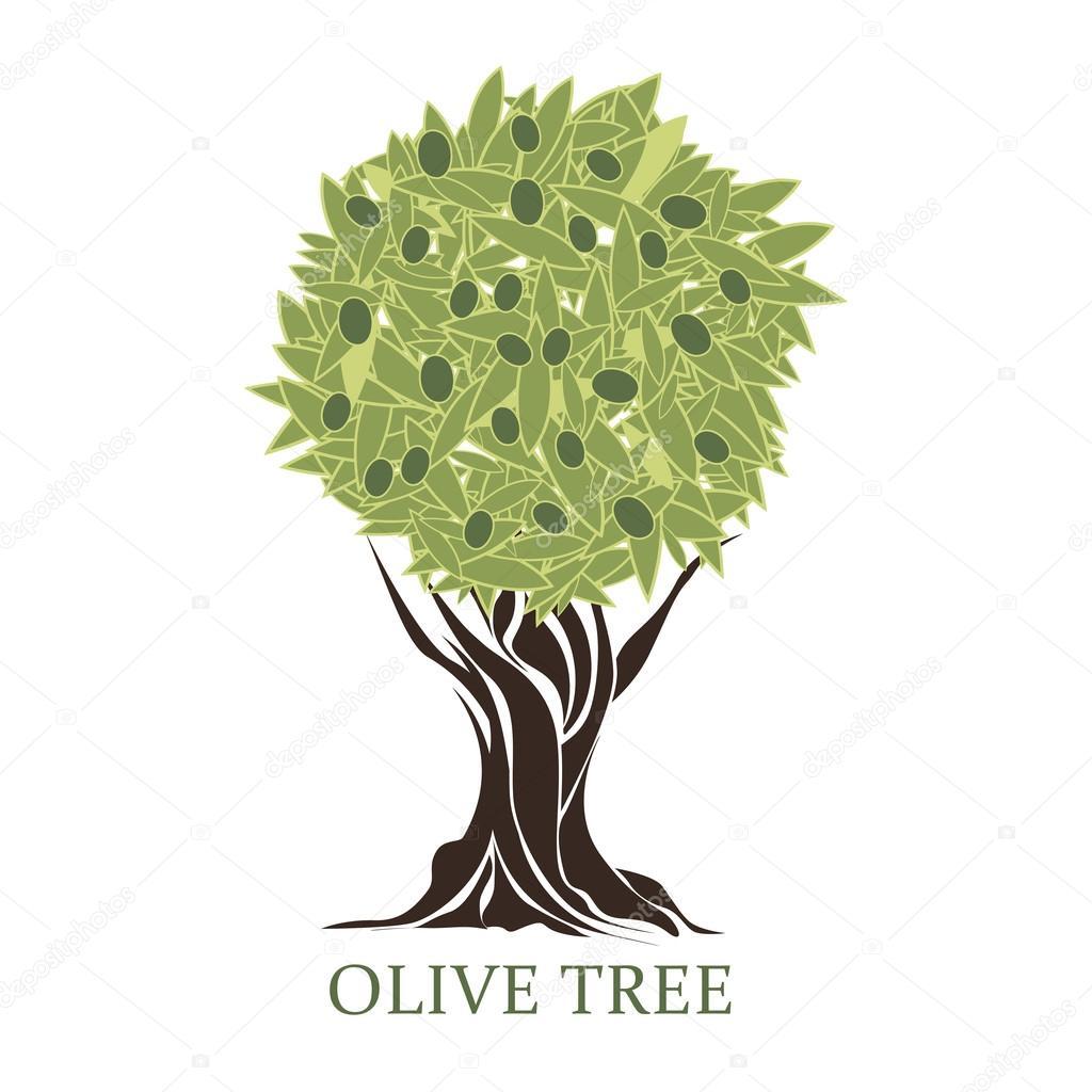 Logo in forma di un albero di ulivo stilizzato con olive for Albero ulivo vettoriale
