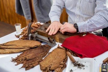 Man making cigars