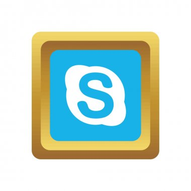 Skype social icon