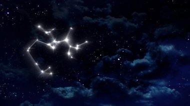 9 Sagittarius Horoscope night white