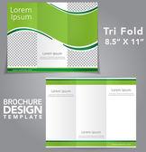 Tri-Falte-Broschüre-Vektor-design