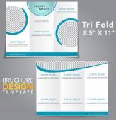 Tri Fold Broschüre design