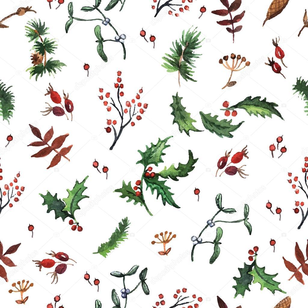 Weihnachten-Pflanzen — Stockvektor © Ann_art #57358129