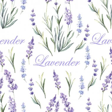 Watercolor lavender botanical pattern