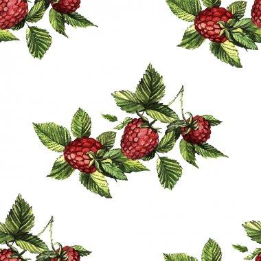 Watercolor pattern with raspberries