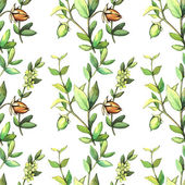 Fotografie Watercolor pattern with jojoba plants.