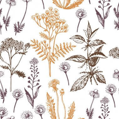 Graphic pattern with medicinal herbs.