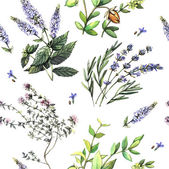 Fotografie Watercolor decorative pattern with medicinal plants.