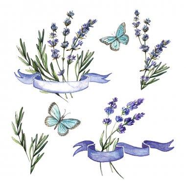 watercolor decorative set