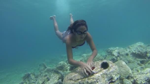 Dívka, potápění pro hvězdice