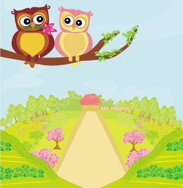 owls in love , sweet card design.