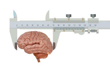 Vernier caliper with brain, IQ concept