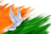 Fotografia Colomba in volo sulla bandierina indiana per la festa della Repubblica indiana