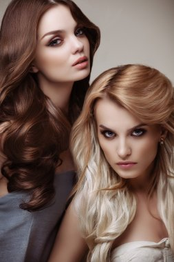 Brown and Blonde Hair. Portrait of Beautiful Womans with Long Ha