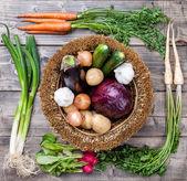 Čerstvé organické bio zeleniny na dřevěné pozadí