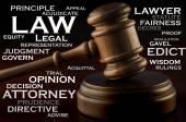 Palička dřevěná soudce a slov