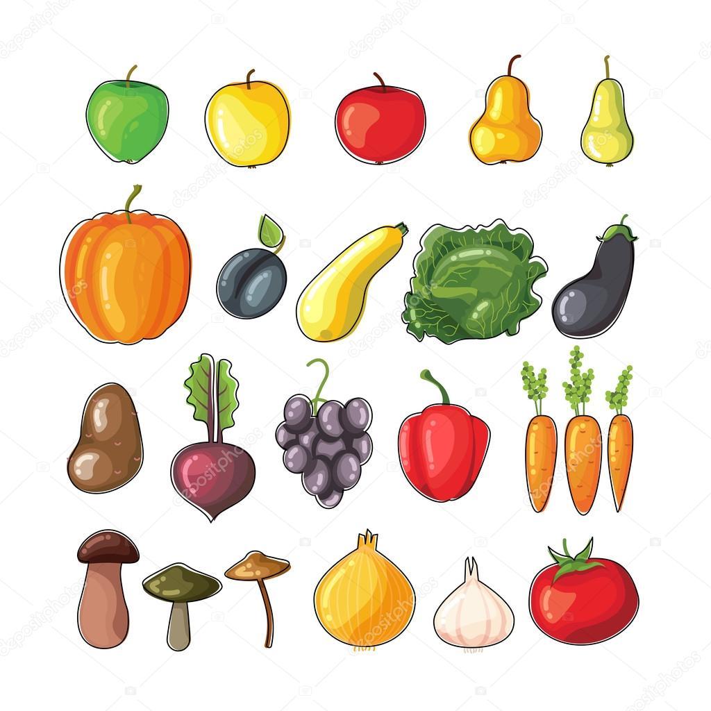 Осенние фрукты и овощи — Векторное изображение © mrEleidan ...
