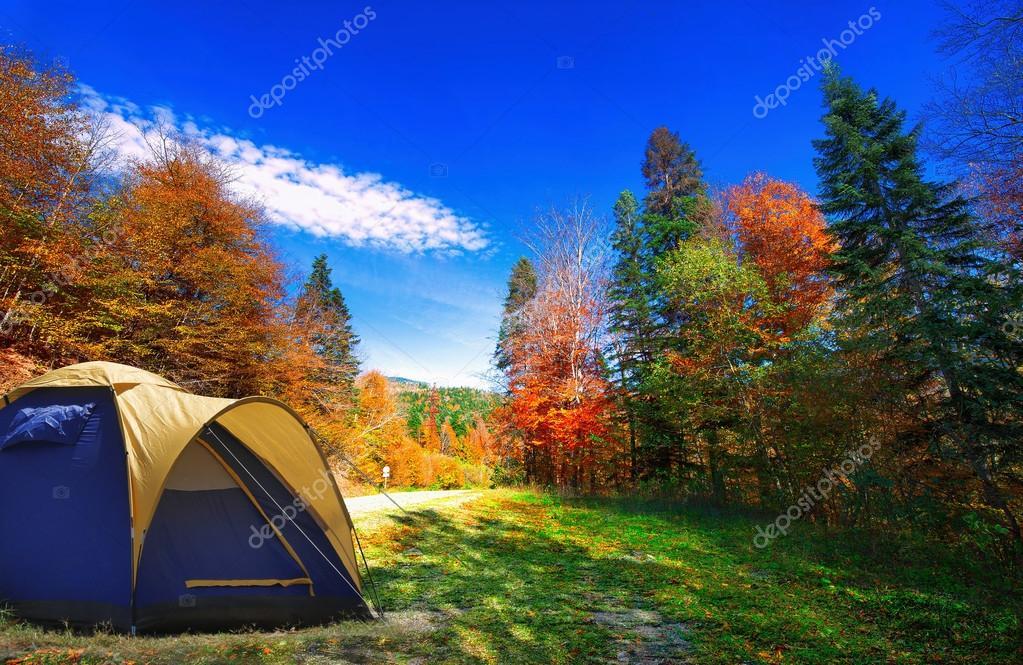 Фотообои Палатка в осеннем лесу