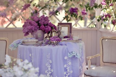 lilac spring