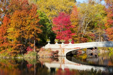 Central Park Bridge in Fall
