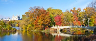 New York City - Central Park Panoramic Landscape