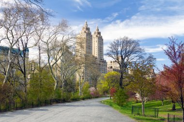 New York City - Central Park Trail in Spring