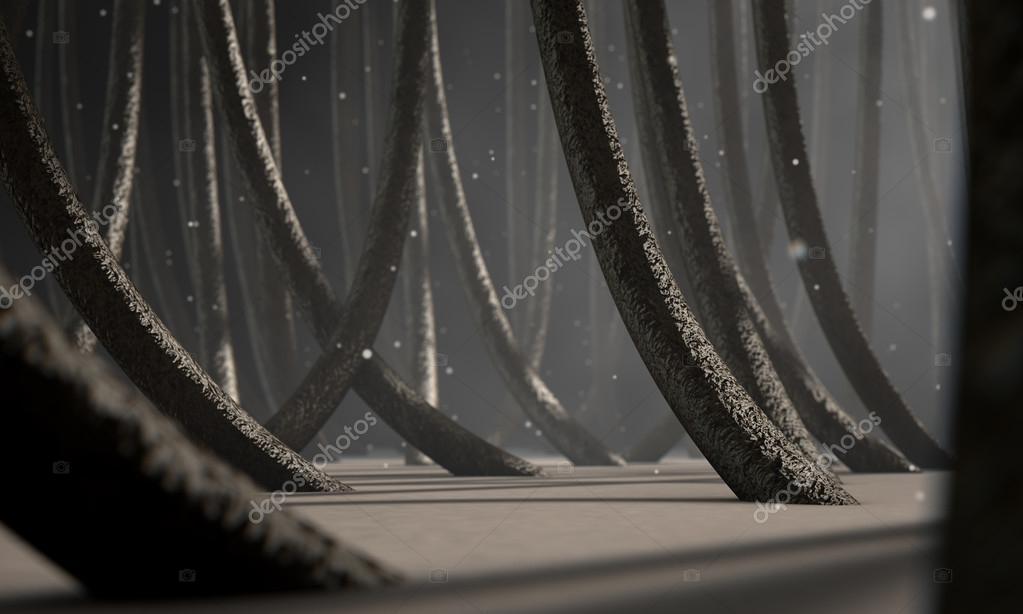 Fibre dei capelli al microscopio — Foto Stock © albund  114370802 714640b58ecd