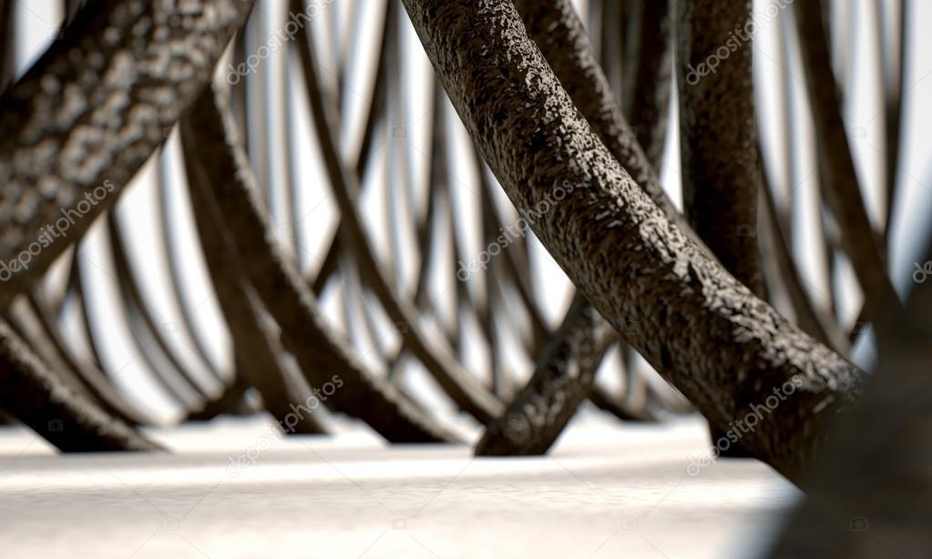 Fibre dei capelli al microscopio — Foto Stock © albund  114371534 4853e5542c0d