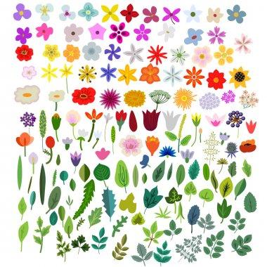 "Картина, постер, плакат, фотообои ""vector plants elements"", артикул 119803026"
