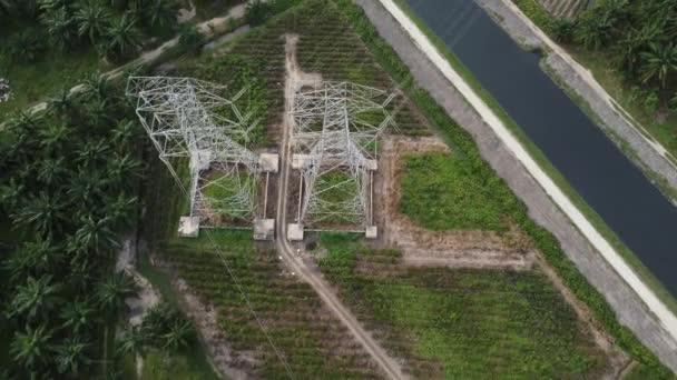 Elektrický pylon shora dolů pohled v blízkosti ropné palmy zemědělství pole