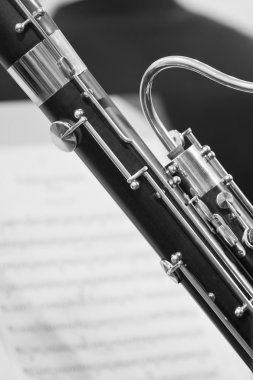 Detail of the bassoon