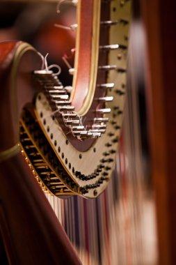 Detail of harp