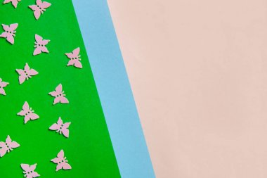 Close up photo of cherry tree blossoming branch on colorful pink and green background. Top view, spring, Easter and various holidays and events concept