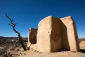 Photo ryans ranch ruins in joshua tree national park