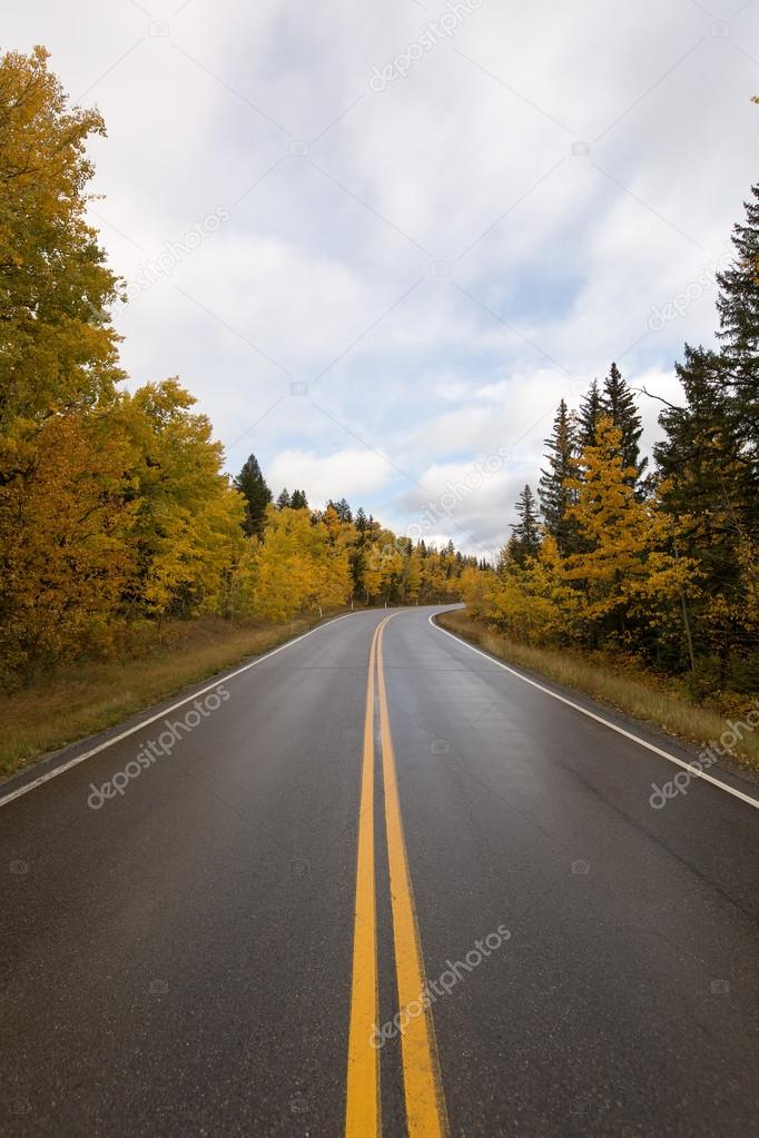 Nasser Fahrbahn Durch Herbst Wald In Kanada Stockfoto