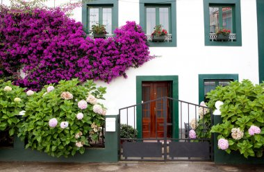Beautiful house with with pots on their windows