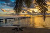 Pier auf tropischer Insel