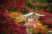 Daigoji chrám v javory