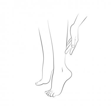 Beautiful womans female legs and hand vector
