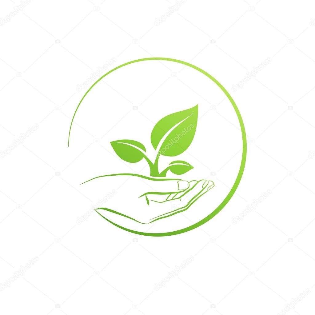 Hand holding plant, logo growth concept vector illustration