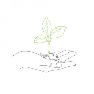Investment concept, close up of female hand holding  coins with plant