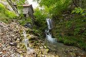 Podzimní listí a potok