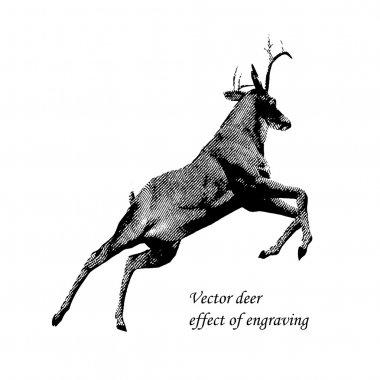 Deer jumps effect of engraving