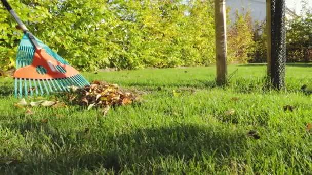 Lehullott levelek és gereblye még zöld fű háttér. Őszi táj. Őszi szezon koncepciója.
