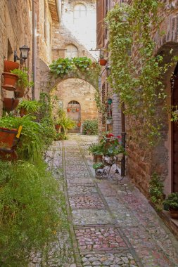 Romantic street in the historic Italian city